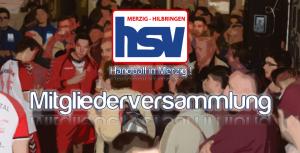 HSV: Neue Satzung online – Mitgliederversammlung am Sonntag !